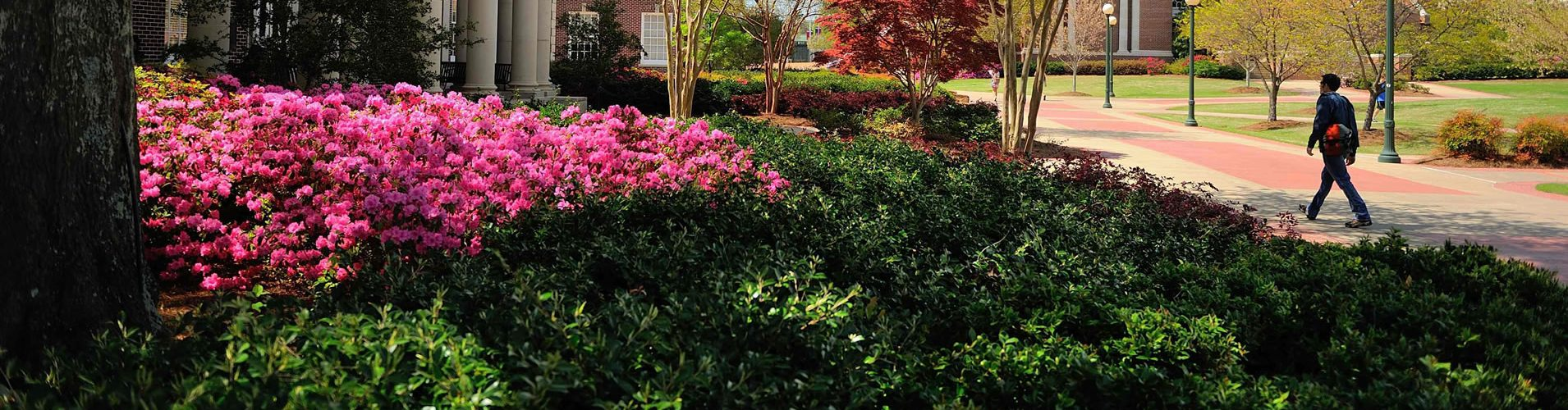 Nashville Landscaping Company Landscaping Company Brentwood Tn